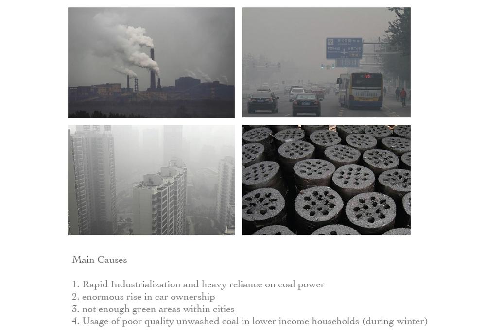Main Causes-01-01-01.jpg