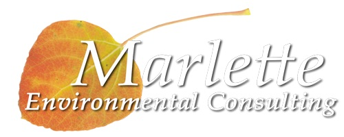 Marlette Environmental Consulting