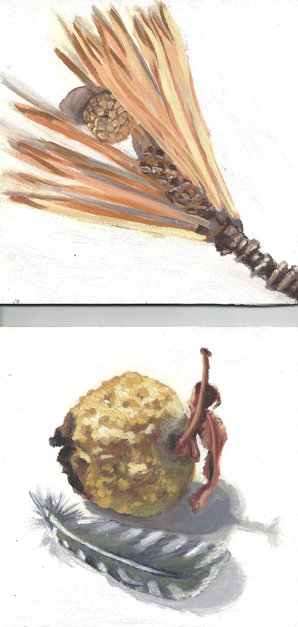 Oil Sketches