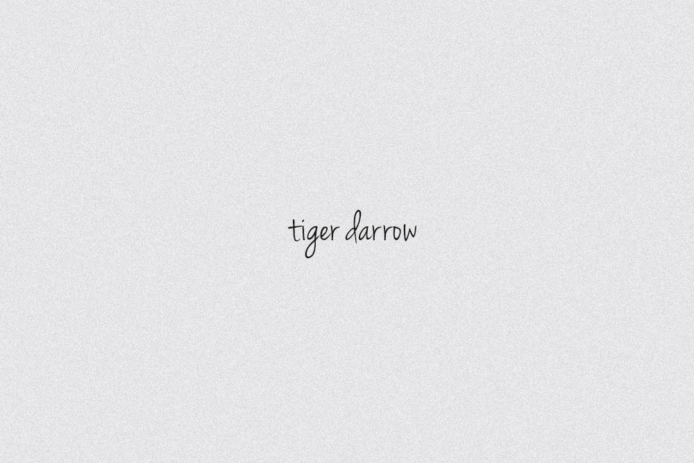 TIGER WORDS 2.jpg