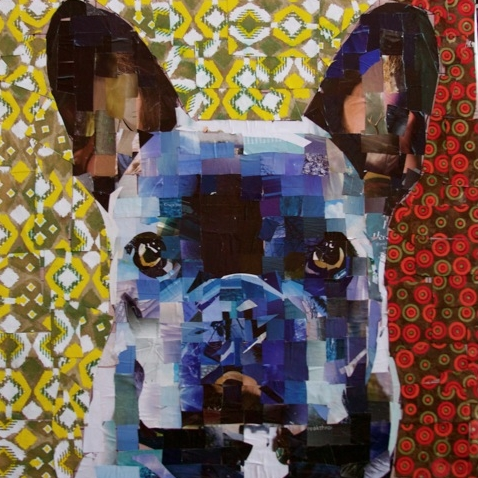 sam-price-frenchie-dog-collage