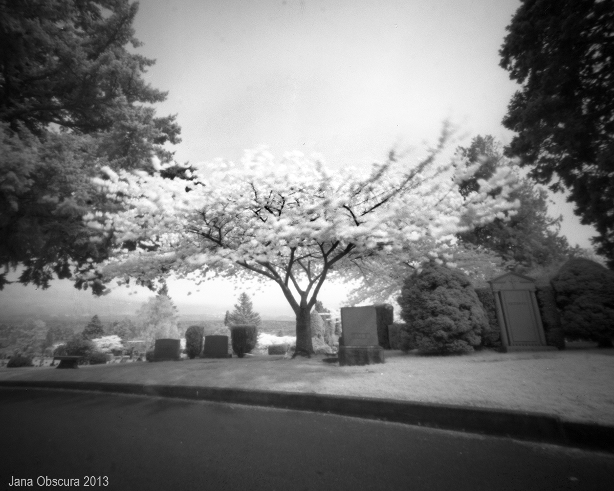 third attempt - IR trees