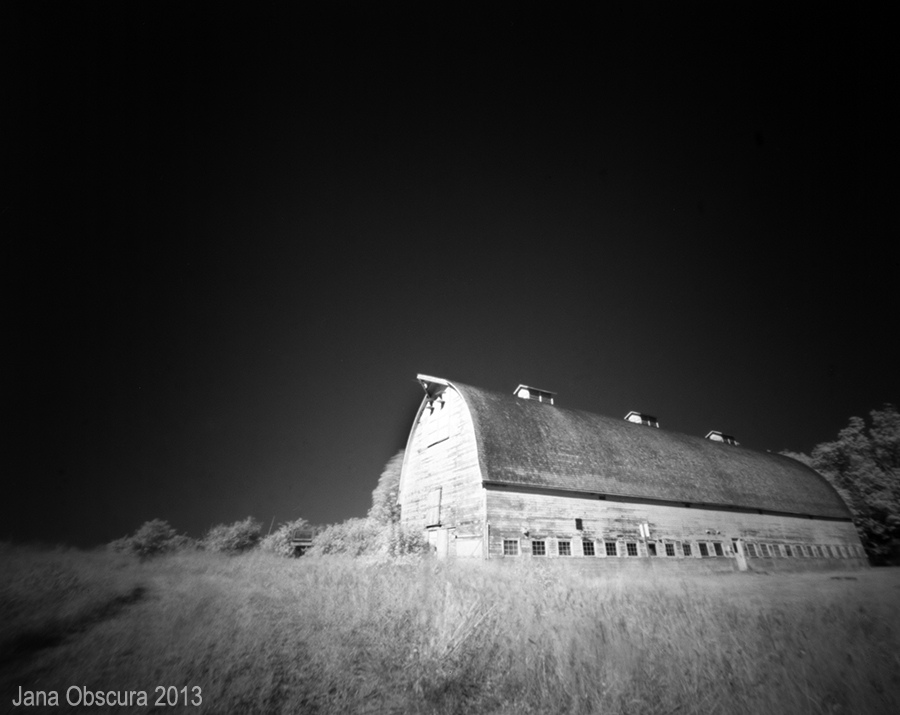 Barn at Nisqually Wildlife Refuge
