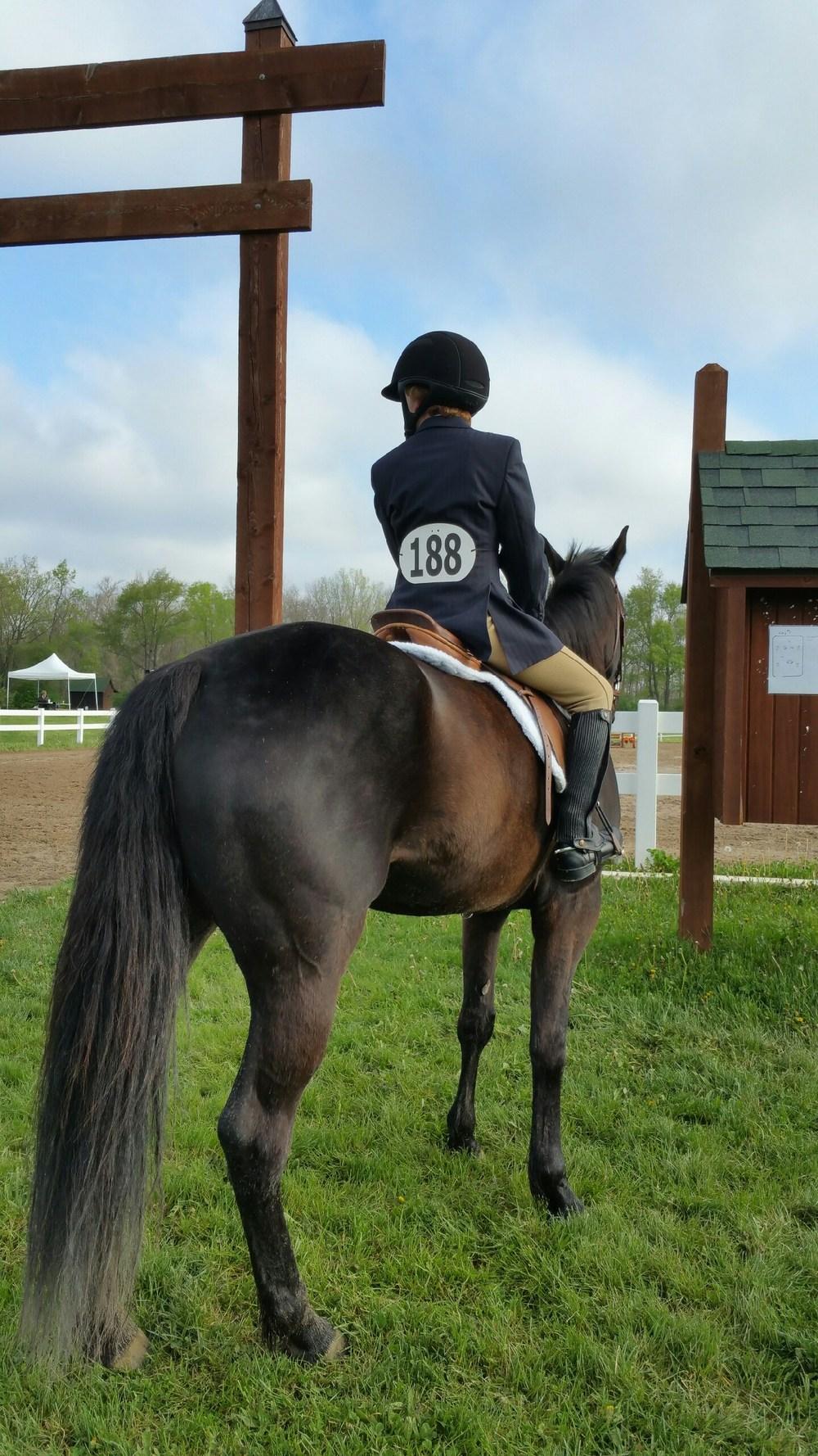 Horse Show Focus!!!