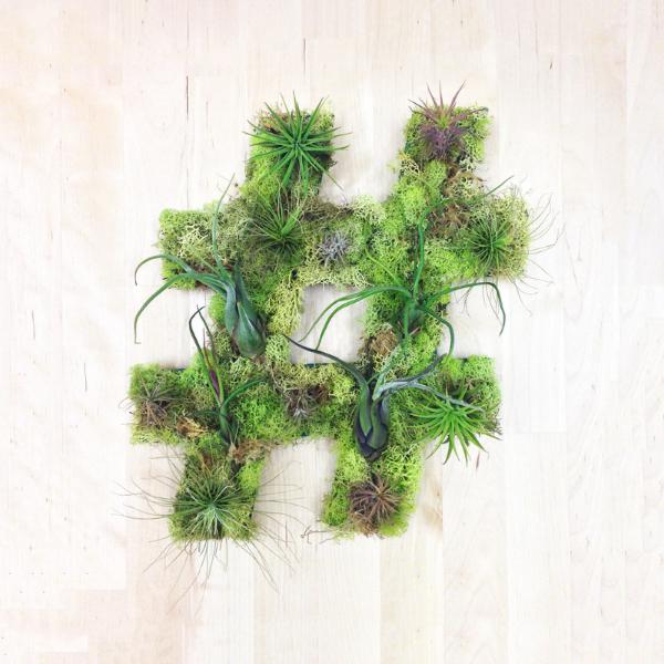plant art from art we heart