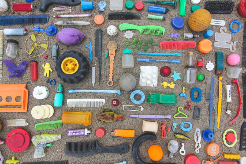 Kaylah's collection of things found on the beach.