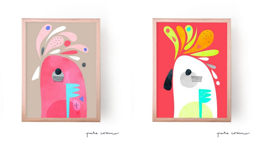 australian bird prints by pete cromer