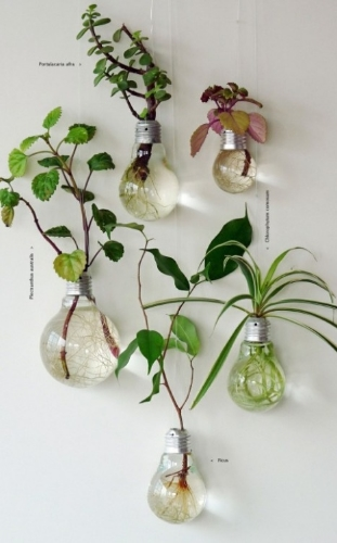 plant in lightbulbs over at mi+ed design