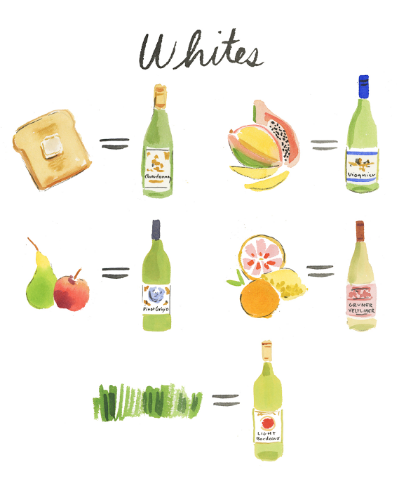 illustrations by caitlin mcgauley (originally spotted on cup of jo's post about wine pairings)