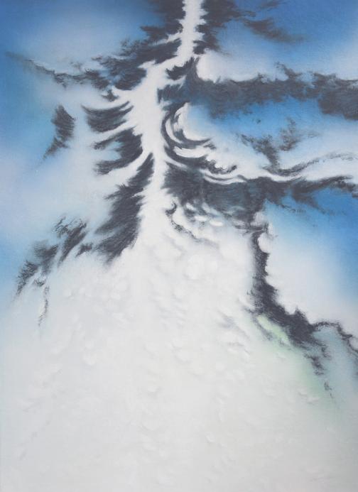 Nouveau monde    acrylique et fusain sur toile marouflée  dimensions : 64 x 88 cm