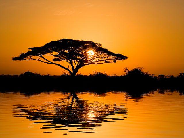 Source: http://www.romanoprodi.it/wp-content/uploads/2010/05/lastminute-africa.jpg