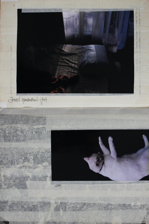collage001.jpg