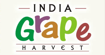 India Grapes Harvest logo