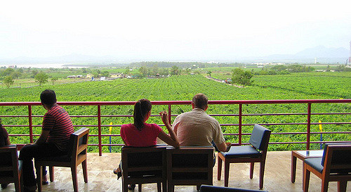 Nashik wine tour | Wine tasting at sula