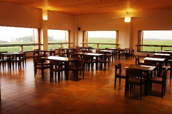 Nashik wine tour | york winery tasting room