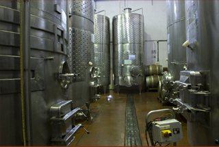 Nashik wine tour | tank hall