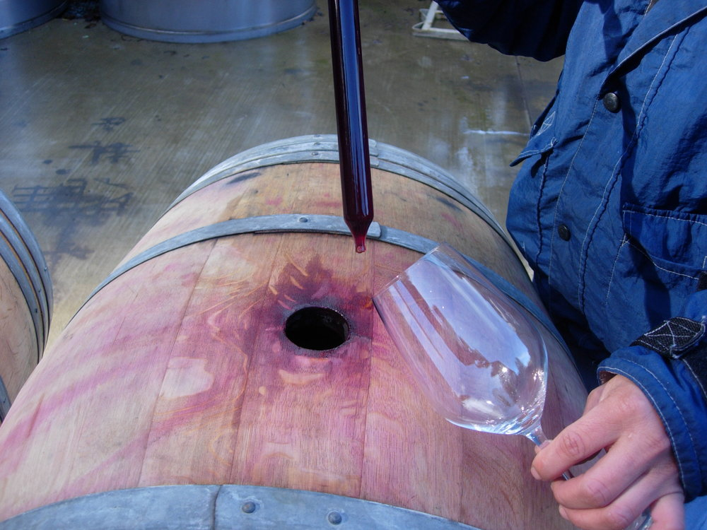 wine out of barrel to glass.JPG