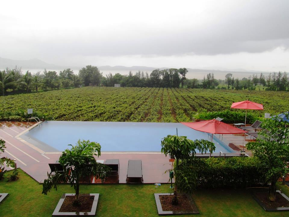 Nashik wine tour | beyond vineyard resort