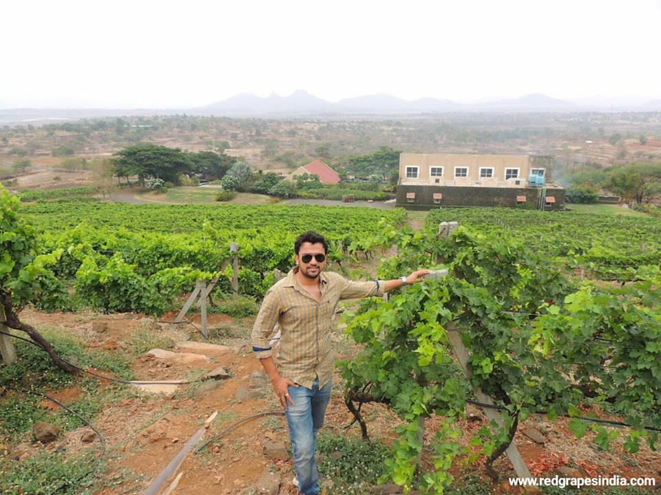 Mr. Vikrant Holkar, Founder and CEO, Red Grapes - Indian wine tourism