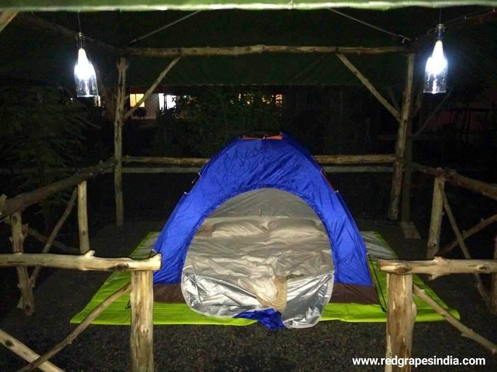 Camping at Wine Information center by Red Grapes at wine park..jpg