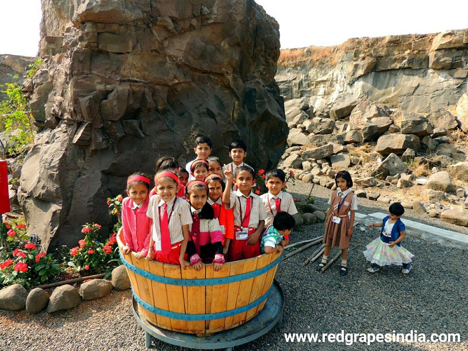Grape stomping for kids on 26th Jan Republic day celebration at Wine information center by Red Grapes at Wine park, Vinchur, Nashik, Maharashtra, India