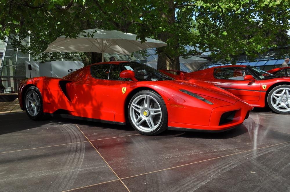 Ferrari Enzo 3.jpg