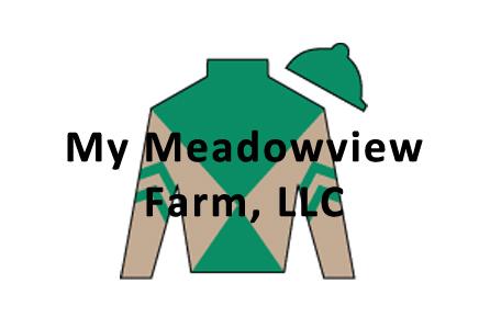My Meadowview Farm Logo.jpg