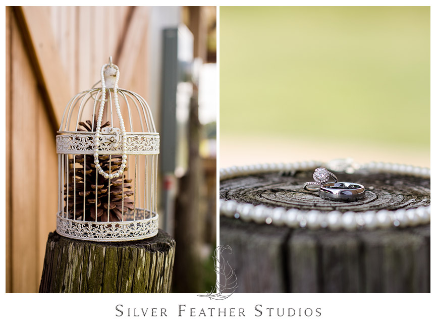 Pearls adorn this bird cage. Bride's jewelry pops against the log background. Starlight Meadow wedding, an approved TriadWeddings venue. © Silver Feather Studios, North Carolina Wedding Photography and Videography
