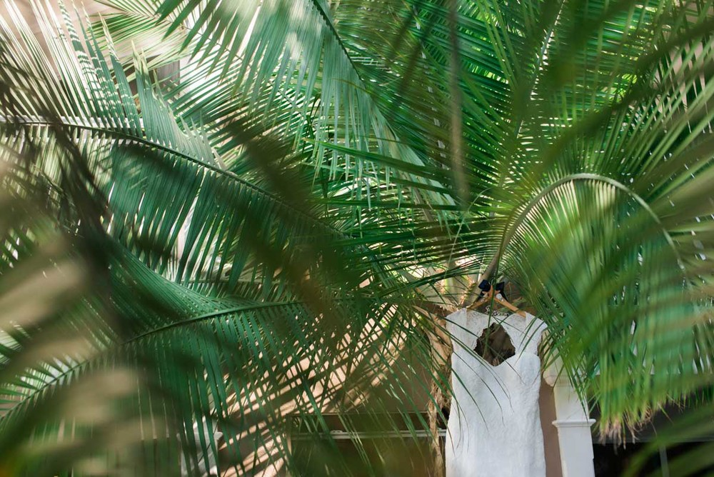 Sandals Destination Wedding in Jamaica, photographed by JJ Horton Photography