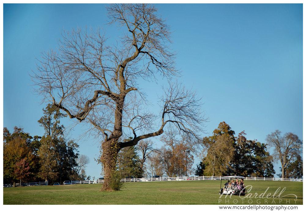 adaumont-farm-wedding-photography-019.jpg