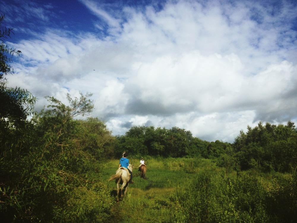 En el Chaco Paraguayo.