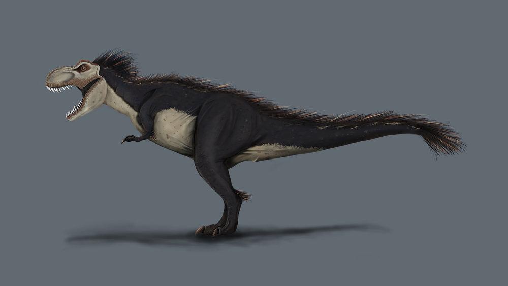 Tyrannosaurus_RexWeb.jpg