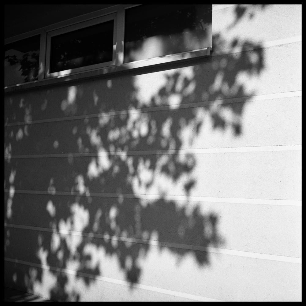 Shadows007 skew.jpg