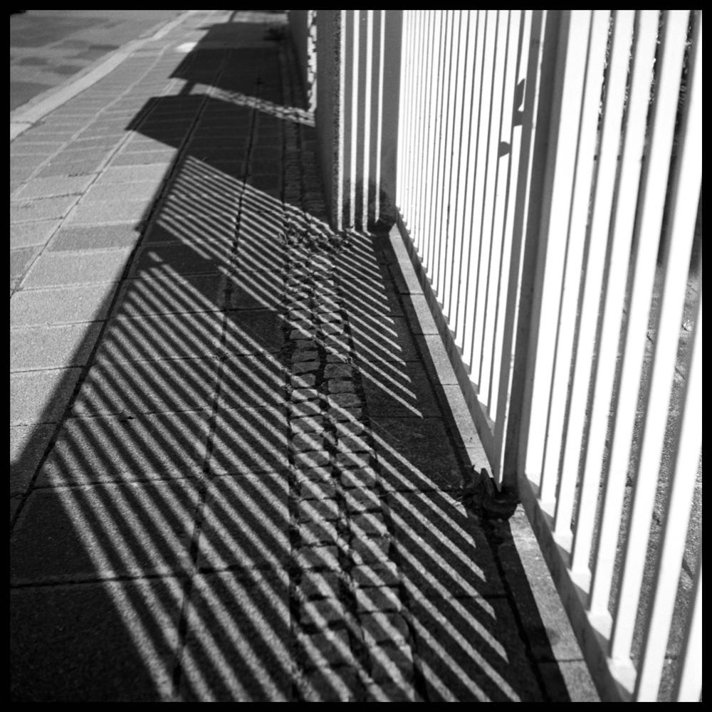 Shadows008 skew.jpg