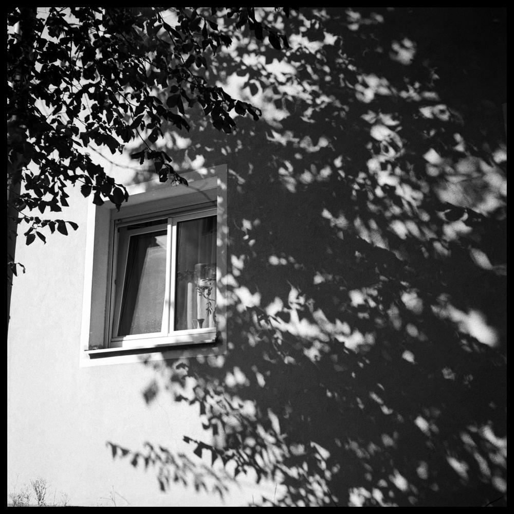 Shadows012 skew.jpg