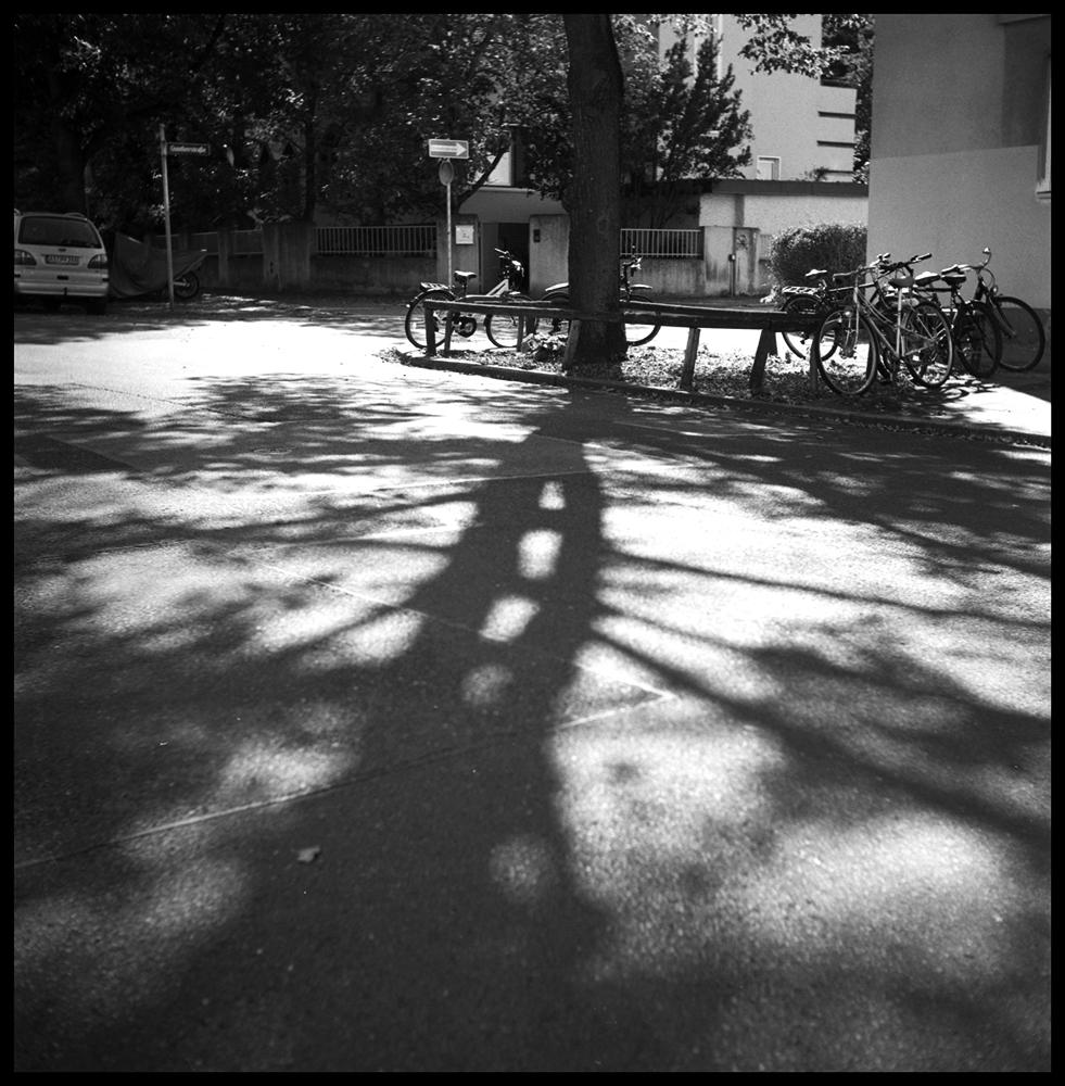 Shadows023 skew.jpg