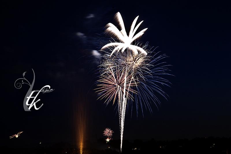 Fireworks Display in Anne Morrison Park - Boise Photographer