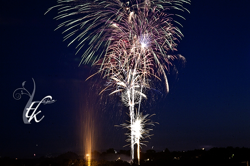 Fireworks Display in Anne Morrison Park - Boise Photography