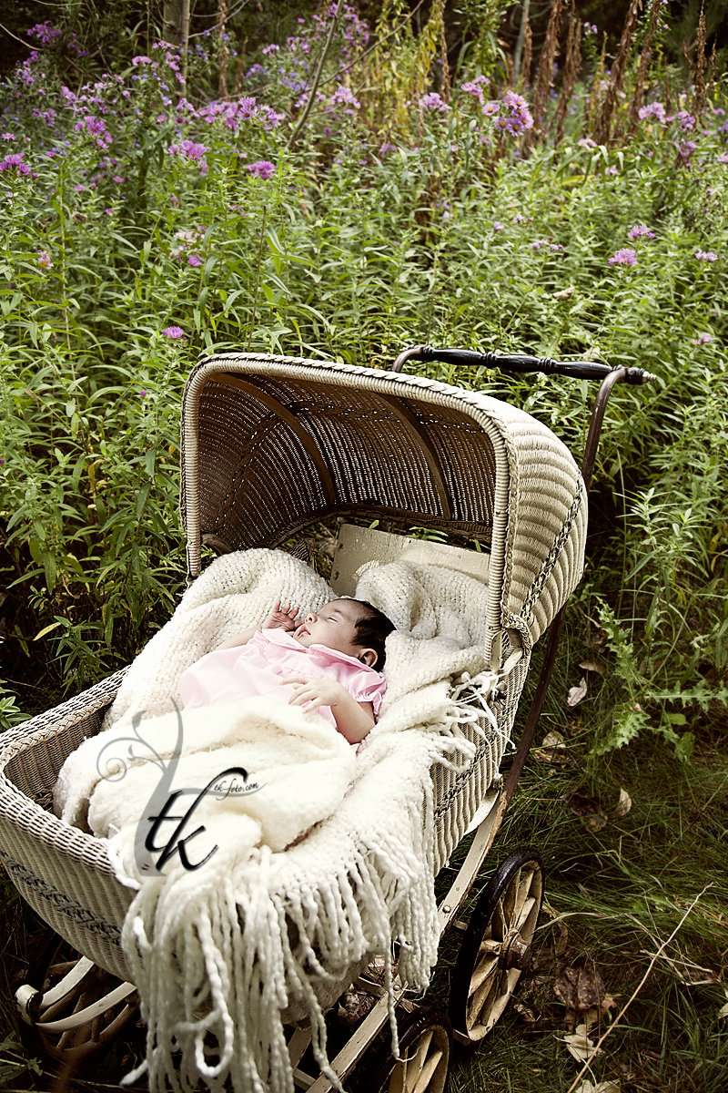 Baby in a Buggy - Boise Idaho Newborn Photographer