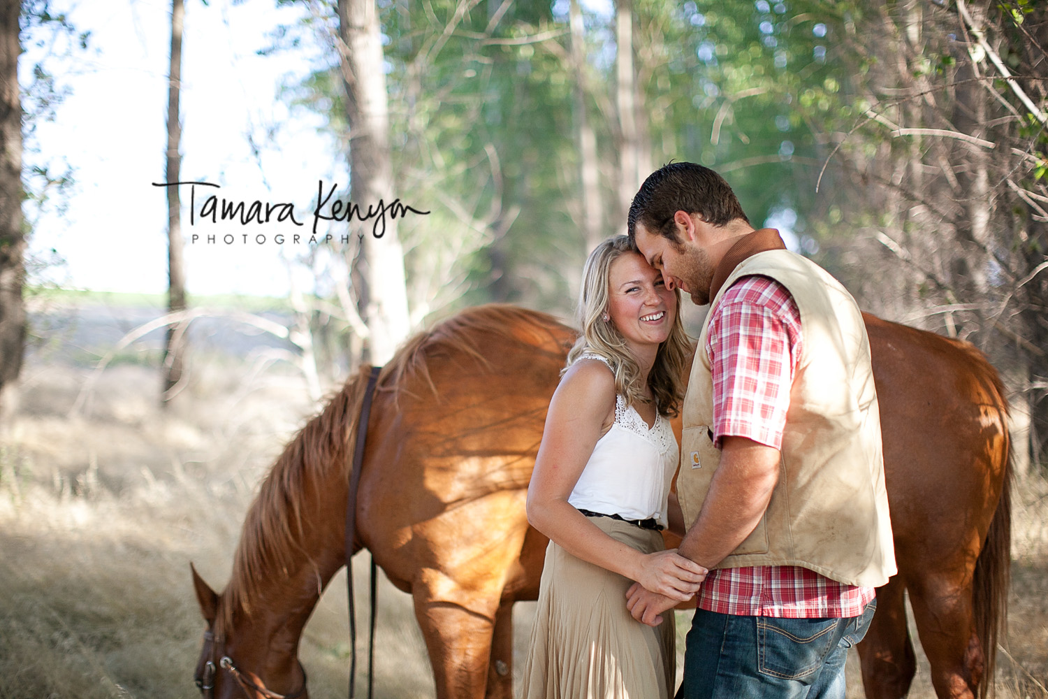 Horses_Idaho_Engagement