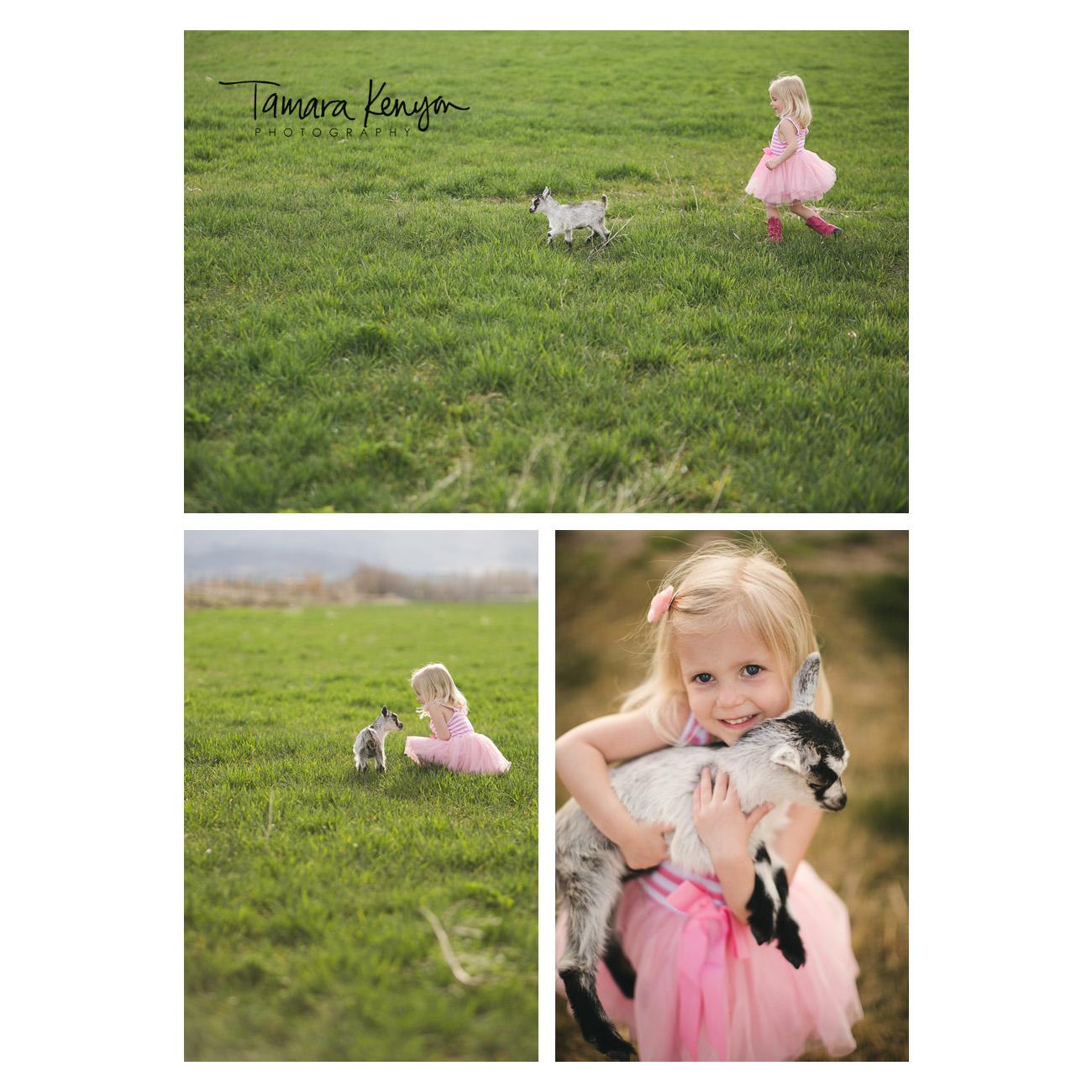 Baby_Goat_Family_Photographer