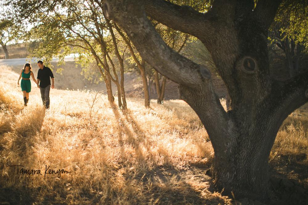 engagement_idaho_boise_winery.jpg