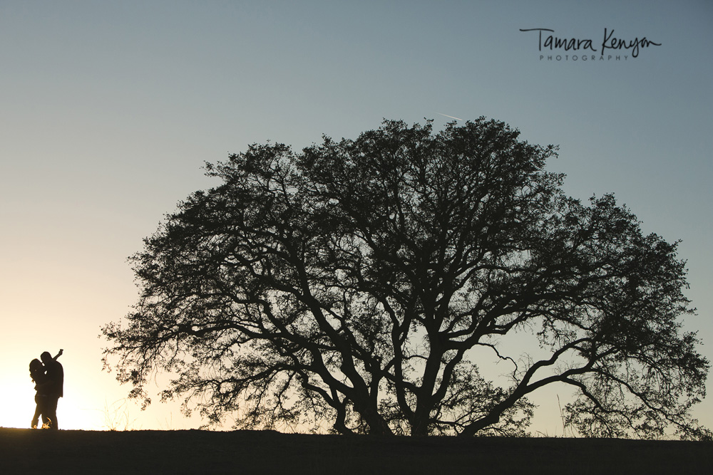 silhouette_engagement_paso_robles.jpg
