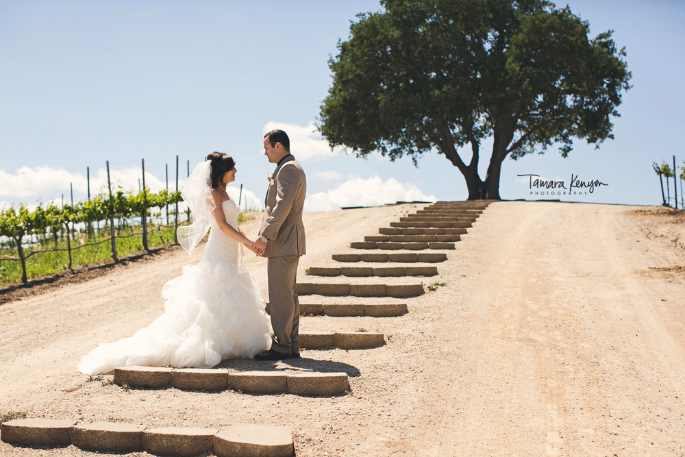 wedding_at_pear_valley_winery