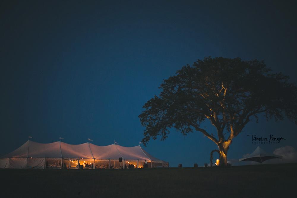wedding_ceremony_at_night_paso_robles