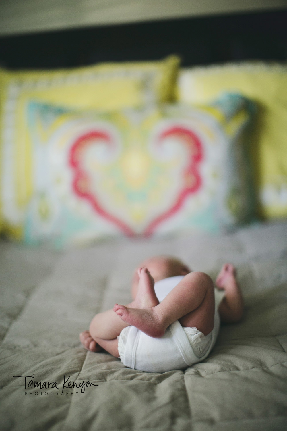 lifestyle_newborn_photography boise idaho