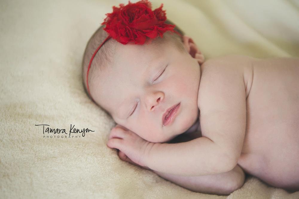 newborn photographers in boise