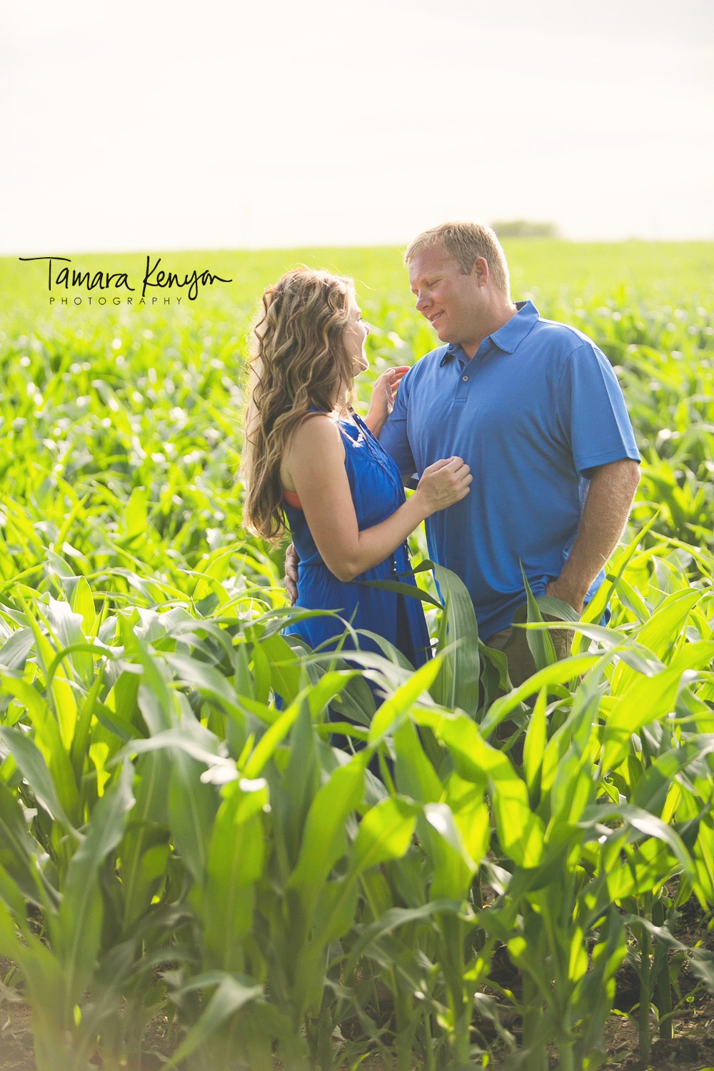 cornfield engagement session