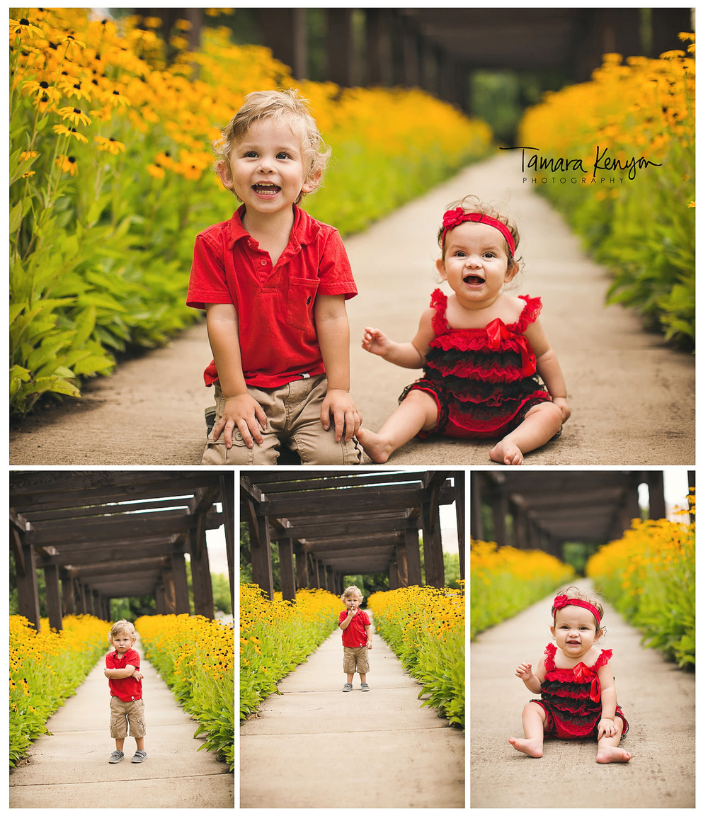 black eyed susans family photography