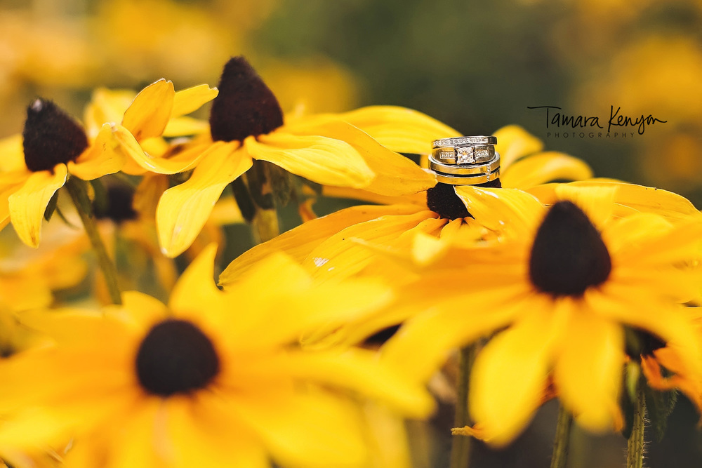 wedding rings black eyed susans